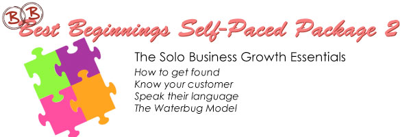 Best Beginnings Self-Paced Package 2 - solo business growth essentials - How to get found. Know your customer. speak their language. Waterbug model.